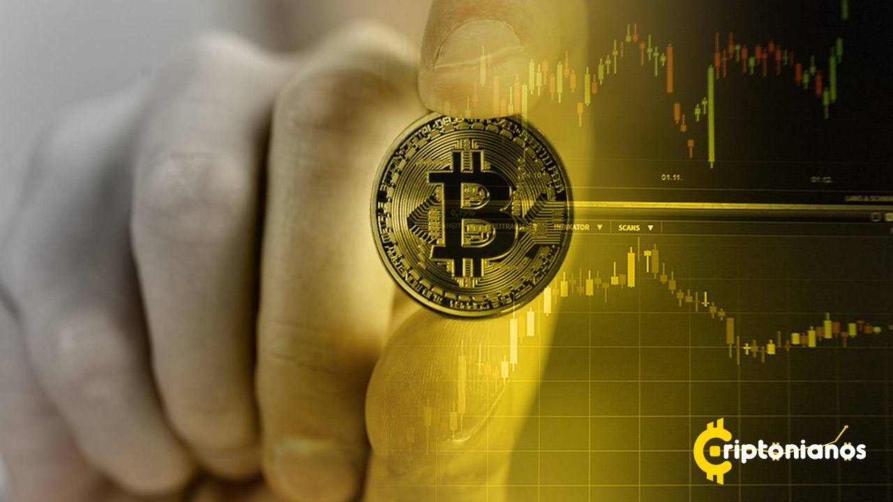 expertos bitcoin